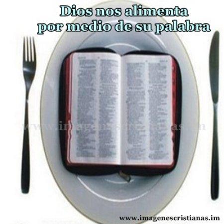 Alimento espiritual.jpg