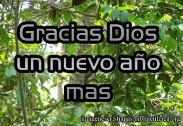 Gracias Dios por Año Mas Img Cristiana.jpg