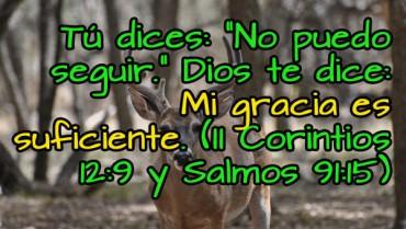 Imagenes Cristianas Diciembre.jpg