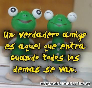 Imagenes y Frases para Amigos.jpg