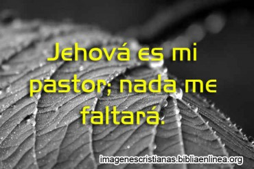 Jehova es mi pastor Nada me Faltara.jpg