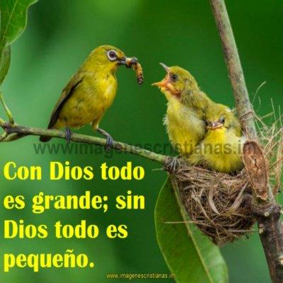 Mensajes cristianos con dios todo se puede.jpg