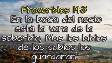 Proverbios 14 3 imagen cristiana.jpg