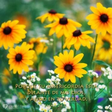 Salmo 26.jpg