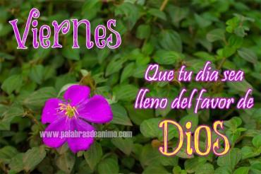 VIERNES Que tu dia sea lleno del favor de Dios – Facebook