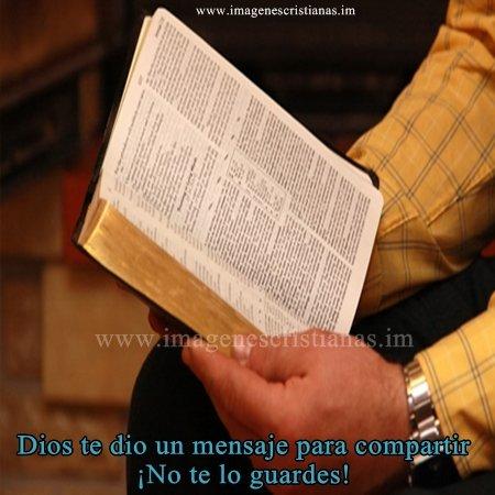 comparte la biblia.jpg