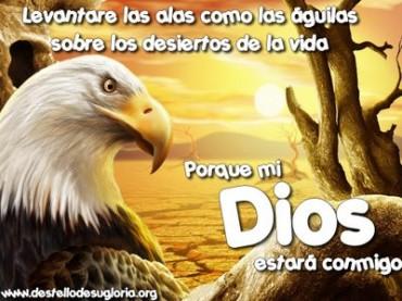 imagenes con palabras cristianas.jpg