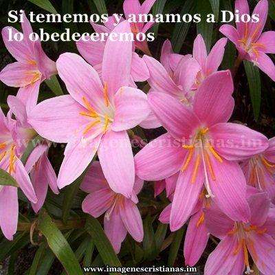 imagenes cristianas amor a dios.jpg
