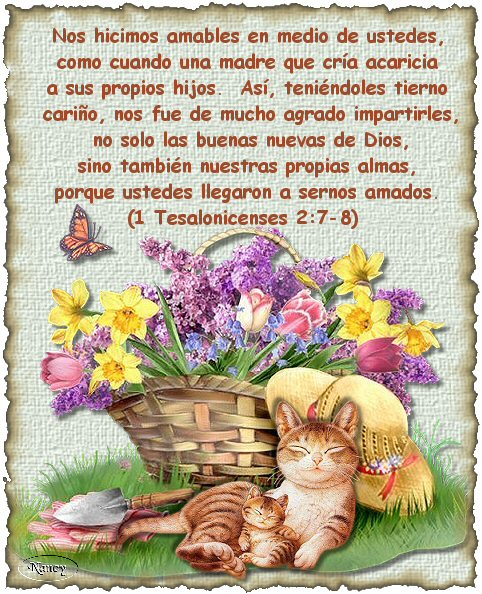 Imagenes Cristianas Con Textos Biblicos Gratis Imagui