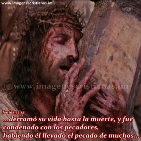 imagenes cristianas de jesus la pasion.jpg