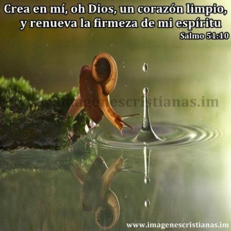 imagenes cristianas dios crea.jpg