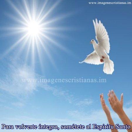 imagenes cristianas espiritu santo.jpg
