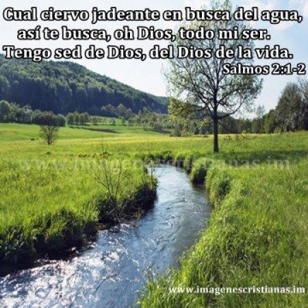 imagenes cristianas rios de agua viva.jpg