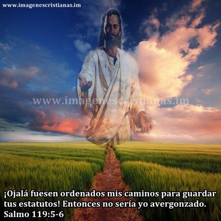 imagenes cristinas camino de dios.jpg
