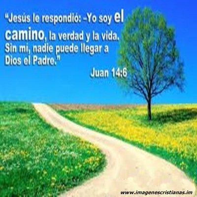 jesus es el camino.jpg