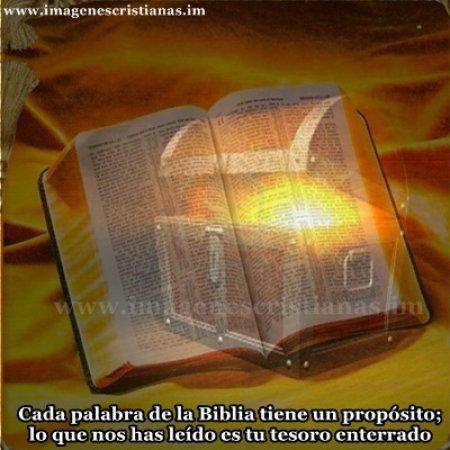 la biblia es un tesoro.jpg