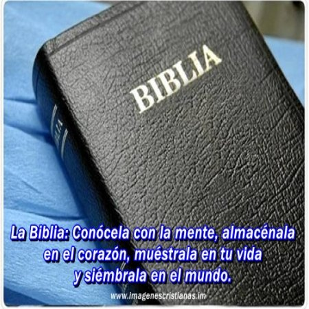 La Biblia Imagenes Cristianas Ministrosorg