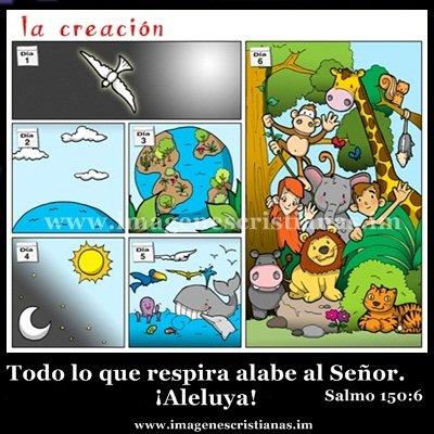 la creacion.jpg