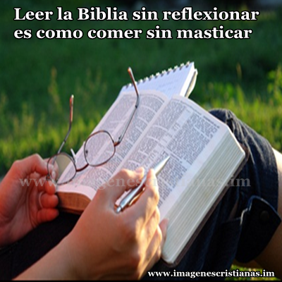 lee la biblia.png