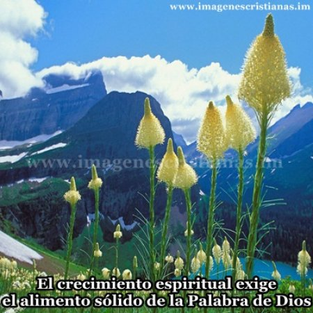 mensajes cristianos con paisajes.jpg