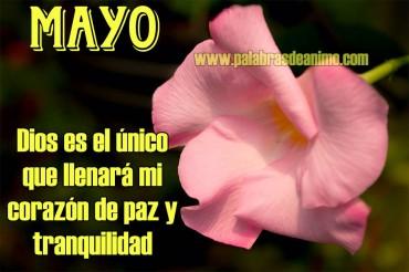 MAYO  Dios es el único que llenará mi corazón de paz y tranquilidad – Facebook