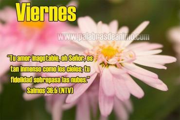 Viernes Dios es nuestro amparo y fortaleza – Facebook