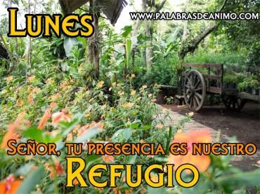 Señor tu presencia es nuestro refugio – Facebook