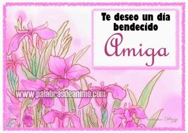 Te deseo un dia bendecido AMIGA