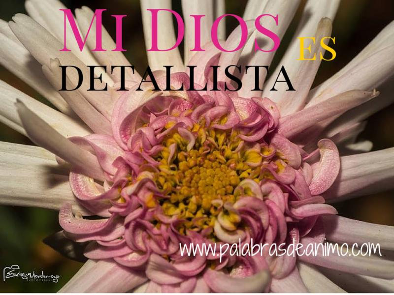 Mi Dios es detallista – Faceoobook