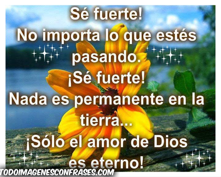 Imagenes Con Frases Cristianas Solo El Amor De Dios Es Eterno