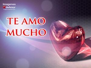Imagenes De Amor Con Frases Bonitas Ministros Org