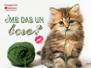 imagenes con frases romanticas para enamorados - me das un beso