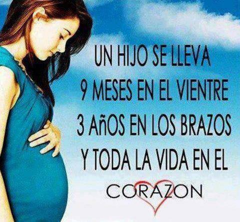 Imagenes De Embarazo Mes A Mes Y Frases Bonitas Para Compartir