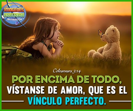 Por encima de todo, vístanse de amor, que es el vínculo perfecto.